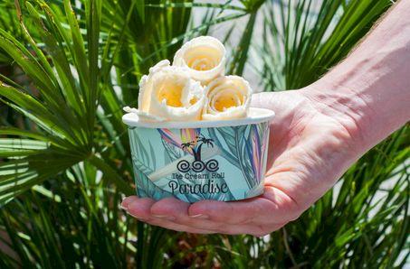 Ice Cream Roll Paradise
