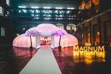 Secret Dinner in the Magnum Mansion - Foto 2