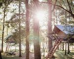 Tree Tents op het Domein van de Grotten van Han nu al bijna volgeboekt voor de zomer