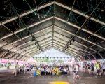 Nieuwe TFS structuren Veldeman populair op festivals