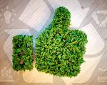 Een duurzaam event? Zo organiseer je het