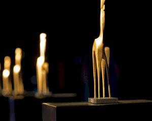 Winnaars Gouden Giraffe 2015