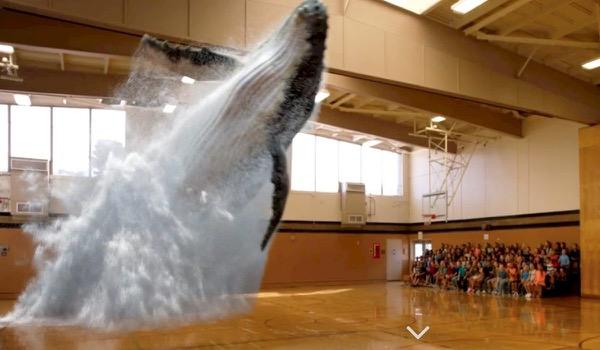 Magic Leap tovert een walvis op je event