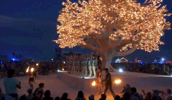 Spectaculair: Boom met 138.000 LED lampjes